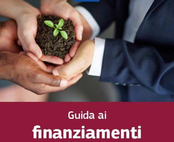 Finanziamenti Unione Europea